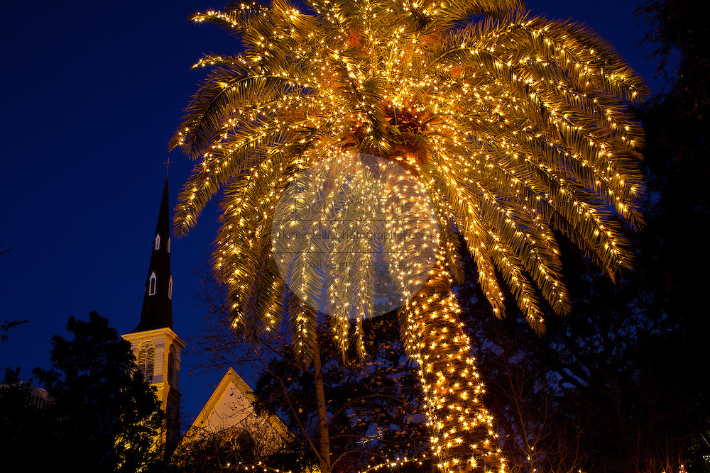 Christmas Lights In Charleston Sc