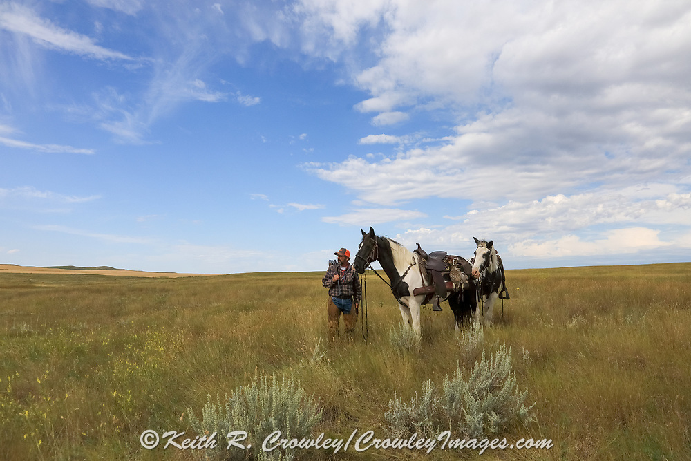John Zeman, takes in the view with his horses Buckwheat and Angel during a Montana grouse hunt.