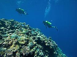 Two Scuba divers explore Mermaid Reef at the Rowley Shoals.