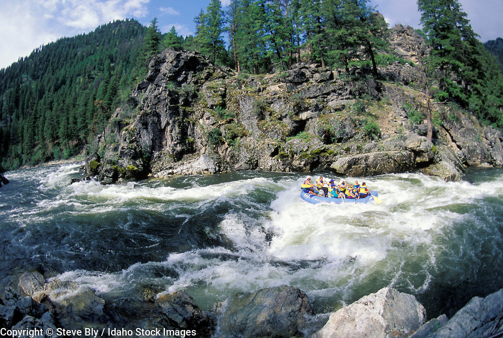 THIS PHOTO IS AVAILABLE FOR WEB DOWNLOAD ONLY. PLEASE CONTACT US FOR A LARGER PHOTO. Idaho, Frank Church Wilderness. Pistol Creek, Middle Fork Salmon River. Rafters enjoying white water. MR