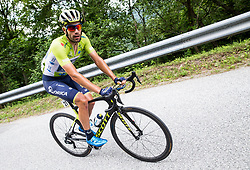 Luka Mezgec (SLO) of Orica - Scott during Stage 3 of 24th Tour of Slovenia 2017 / Tour de Slovenie from Celje to Rogla (167,7 km) cycling race on June 16, 2017 in Slovenia. Photo by Vid Ponikvar / Sportida