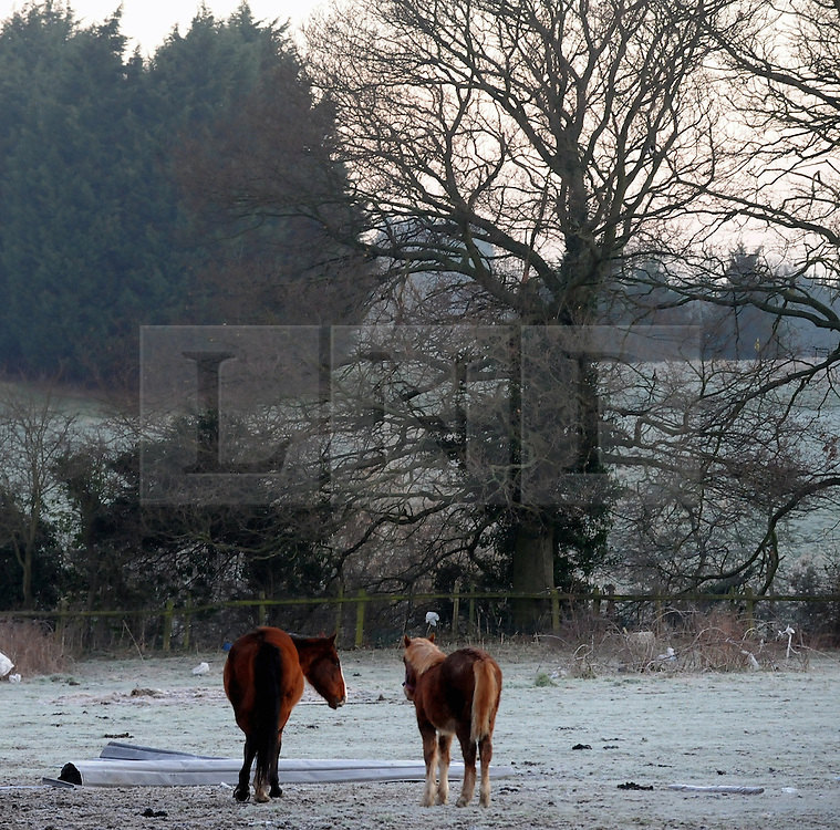 © Licensed to London News Pictures. 16/02/2016<br /> As the temperature drops the Met Office predicts ice and snow for London and the south east.  Freezing cold weather this morning in St Pauls Cray,Orpington,Kent.<br />  (Byline:Grant FalveyLNP)
