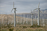 field of wind turbines California USA