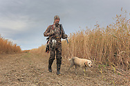 Successful waterfowl hunter walks with his yellow Lab.