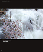 """Image: """"Frozen Willow in Eagle Falls"""""""