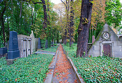 Pathway in the old Jewish cemetery in Prenzlauer Berg in Berlin Germany