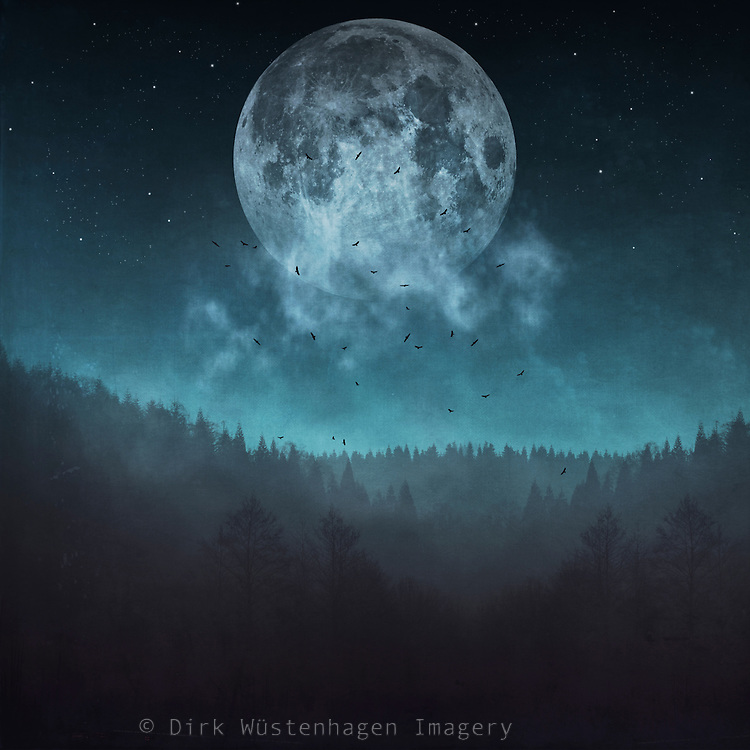 Full moon and stars over a misty woodland - manipulated and textured photograph<br />