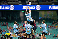 SYDNEY, NSW - MARCH 09: Waratahs player Jed Holloway (4) goes up for the ball at round 4 of Super Rugby between NSW Waratahs and Queensland Reds on March 09, 2019 at The Sydney Cricket Ground, NSW. (Photo by Speed Media/Icon Sportswire)