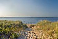 Path Through Dunes To Beach, New York, Long Island, East Hampton, Northwest Harbor Park