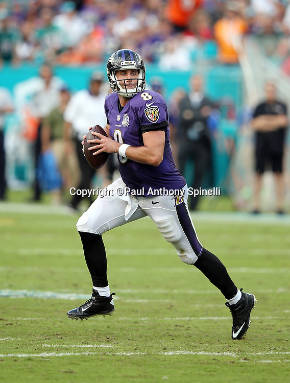 Baltimore Ravens quarterback Matt Schaub (8) scrambles away from pressure by Miami Dolphins defensive end Derrick Shelby (79) during the 2015 week 13 regular season NFL football game against the Miami Dolphins on Sunday, Dec. 6, 2015 in Miami Gardens, Fla. The Dolphins won the game 15-13. (©Paul Anthony Spinelli)