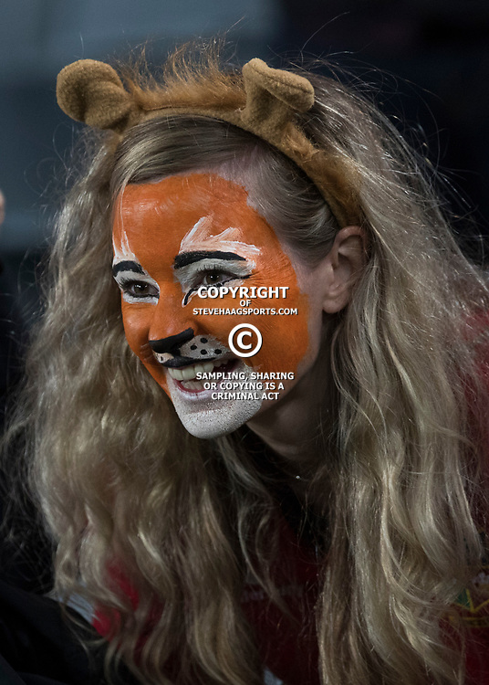 British &amp; Irish Lions Fan during game 7 of the British and Irish Lions 2017 Tour of New Zealand, the first Test match between  The All Blacks and British and Irish Lions, Eden Park, Auckland, Saturday 24th June 2017<br /> (Photo by Kevin Booth Steve Haag Sports)<br /> <br /> Images for social media must have consent from Steve Haag