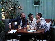 Simon Oakes, Pete Mikic and Sebastian Scott, Evening at Sanderson, 3 June 2003. © Copyright Photograph by Dafydd Jones 66 Stockwell Park Rd. London SW9 0DA Tel 020 7733 0108 www.dafjones.com