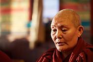 Tsoknyi Gebchak Ling Nunnery, 2017