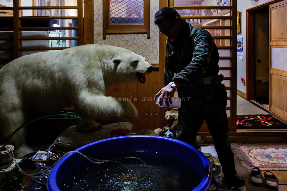 Onahma, Iwaki city, Fukushima prefecture, December 11 2014 - Hisano YANAI feeding fish in his former house.<br /> Hisao YANAI is a former yakuza boss of Hirono, 25km south of the nuclear power plant. He lost his right arm when he was 15 and spent 28 years in jail for various crimes during his life. He is now taking refuge in Onahama, 60 km from the plant, as it is still not allowed to live in his former house.<br /> Mr Yanai owns two boats and 6 cars and visit his former house everyday.