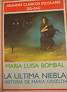 I came to the US in order to complete my graduate studies in Latin American literature; thus, books in Spanish play a<br />