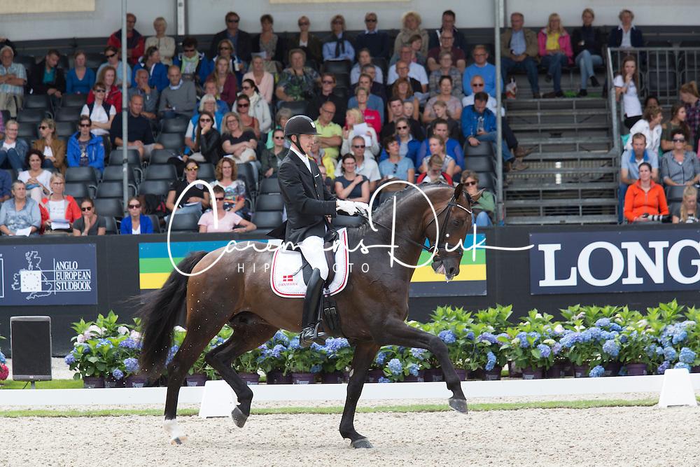 Sigtenbjerggaard Thomas, DEN, Vincent Maranello<br /> World Championship Young Dressage Horses <br /> Ermelo 2016<br /> &copy; Hippo Foto - Leanjo De Koster<br /> 29/07/16