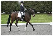 Affiliated British Dressage. Sheepgate E.C. Sun 25-1-2009. 2