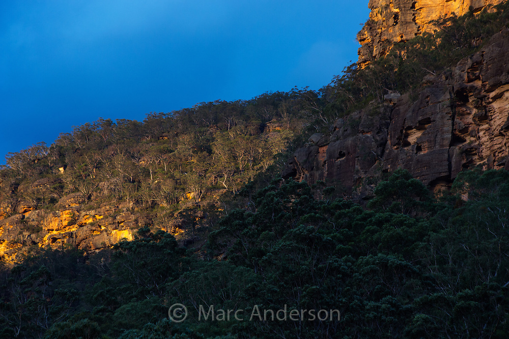 Sandstone escarpment in warm evening sunlight, Wollemi National Park, NSW, Australia