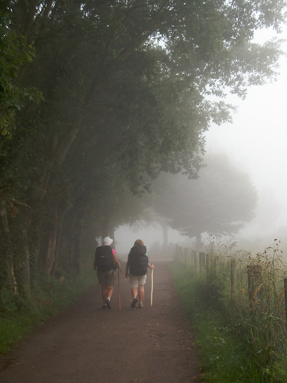 On the camino one early morning the mist came down near Barbadelo. There were many kilometres of trails through the woods. The atmosphere was one of silent reflection.
