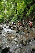 Eco tourists hike along a rain forest trail on the Osa Penisula, Costa Rica