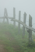 Fence in a road in morning fog, Peloño Forest, Ponga, Asturias, Spain
