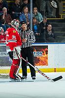 KELOWNA, BC - FEBRUARY 7: Linesman Dustin Minty stands at the net of Joel Hofer #30 of the Portland Winterhawks against the Kelowna Rockets at Prospera Place on February 7, 2020 in Kelowna, Canada. (Photo by Marissa Baecker/Shoot the Breeze)