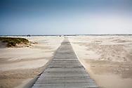 DEU, Germany, Schleswig-Holstein, North Sea,  Amrum island, plank roadway at the beach Kniepsand in Nebel.<br /> <br /> DEU, Deutschland, Schleswig-Holstein, Nordseeinsel Amrum, Bohlenweg am Strand Kniepsand von Nebel.