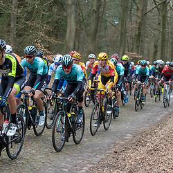 23-03-2019: Wielrennen: Drentse Dorpenomloop: Assen<br />-wielrennen - Assen - Drenthe - KNWU<br />Piotr Havik, Dion Beukeboom