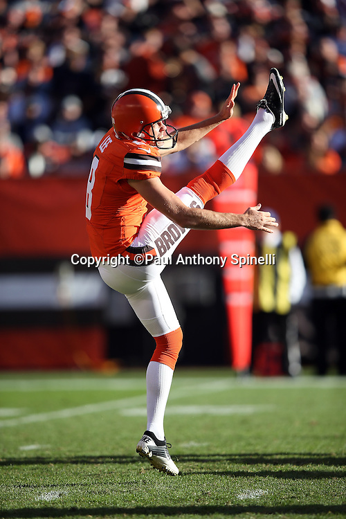 Cleveland Browns punter Andy Lee (8) punts during the 2015 week 8 regular season NFL football game against the Arizona Cardinals on Sunday, Nov. 1, 2015 in Cleveland. The Cardinals won the game 34-20. (©Paul Anthony Spinelli)