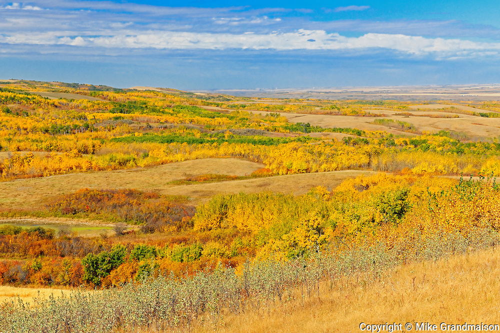 Autumn on the Canadian Prairie<br /> Baljennie<br /> Saskatchewan<br /> Canada