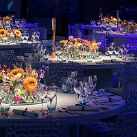 2016-09-07 Opening CSK Food Enrichment Leeuwarden