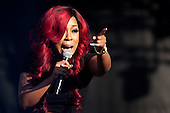 K. Michelle at the African American Festival