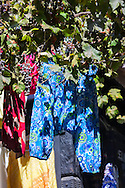 Colorful trousers for sell hang under a tree in the medina of Chefchaouen, Morocco.