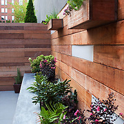 Disco Garden Wall