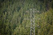 High voltage tower carrying electricity from dams allong the Clackmas River in the Mount Hood National Forest, Oregon.