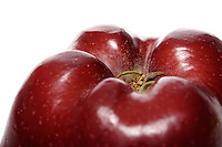 Close-up of red apple in white background