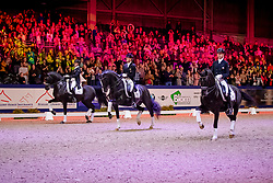 Gal Edward, Total US, Minderhoud Hans Peter, Toto Jr, Ockhuisen Ingrid, Trafelgar<br /> KWPN hengstenkeuring - 's Hertogenbosch 2020<br /> © Hippo Foto - Dirk Caremans<br />  01/02/2020