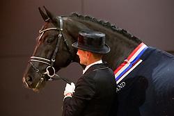 Gal Edward, NED, Totilas <br /> KWPN Stallion Show 2019<br /> © Hippo Foto - Sharon Vandeput<br /> 1/02/19