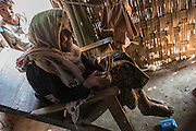 Elderly woman in a refugee camp near Sittwe. 2015-02-05.