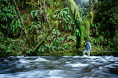 North Fork Nehalem Fly  Fishing Photos - Stock images