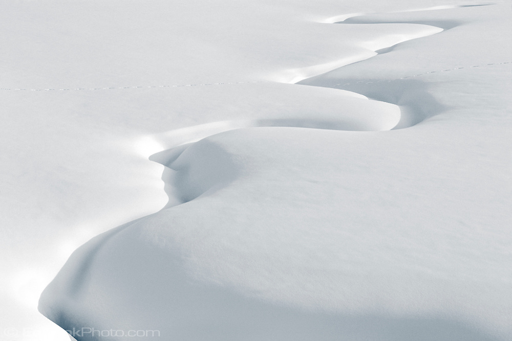 Meandering Indian Creek under deep snow in Yellowstone, National Park, Wyoming, USA