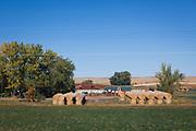 T&aring;gresa genom Montana.<br /> <br /> Foto: Christina Sj&ouml;gren