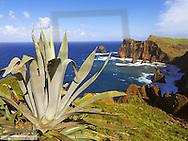 Ponta de Sao Lourenco, Madeira, headland in the east, Portugal