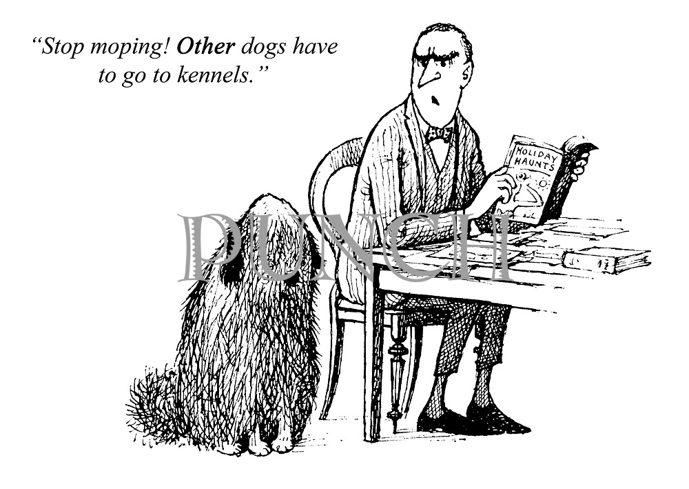 """Stop moping! Other dogs have to go to kennels."""