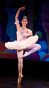 Nov 25, 2009: Theresa Wendler of Rebecca Kelly Ballet performs as the Sugar Plum Fairy in the North Country Ballet Ensemble's 2009 production of the Nutcracker at Hartman Theater in Plattsburgh, N.Y. (Photo ©Todd Bissonette - http://www.rtbphoto.com)