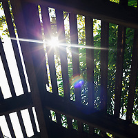 the light of the sun filtered by leaves and boards