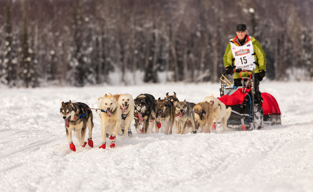 Musher Linwood Fiedler after the restart in Willow of the 47th Iditarod Trail Sled Dog Race in Southcentral Alaska.  Afternoon. Winter.