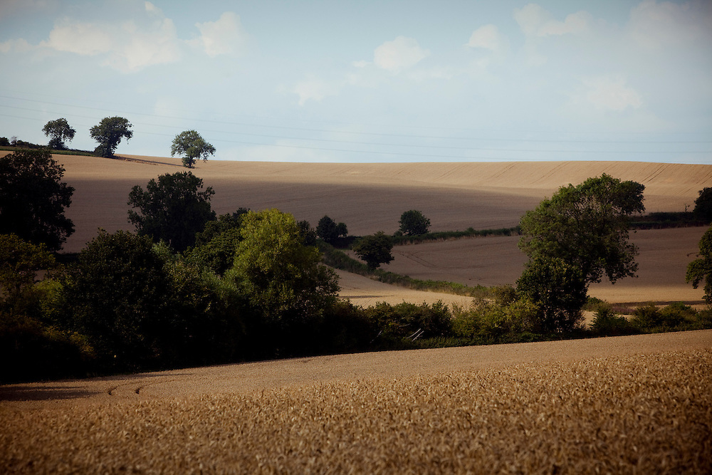 Countryside, Nottinghamshire/Leicestshire border