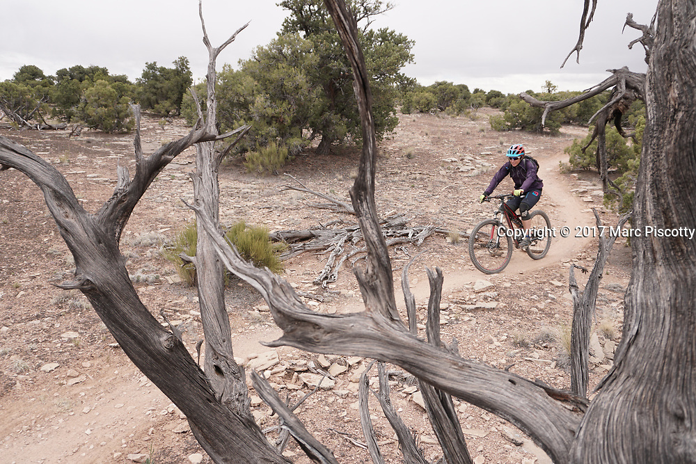 SHOT 5/21/17 1:44:33 PM - Emery County is a county located in the U.S. state of Utah. As of the 2010 census, the population of the entire county was about 11,000. Includes images of mountain biking, agriculture, geography and Goblin Valley State Park. (Photo by Marc Piscotty / © 2017)