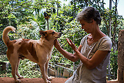 EVA RUPPEL sits with Banyan, one of 170 rescued dogs living with her near Kandy, Sri Lanka, on Wednesday, February 21, 2018. Ruppel does not cage the rescued dogs living with her, allowing them freedom to roam and interact in small packs in multiple pens throughout her property, as well as inside her home. Ruppel created Tikiri Trust, with the financial assistance of her father, to rescue and rehome Sri Lanka's street dogs.<br /> <br /> <br /> It is impossible to visit Sri Lanka without seeing street dogs in nearly every public space, near hotels, guest houses and restaurants, schools, offices, markets, hospitals, police stations, bus terminals, railway stations, temples, etc. These dogs do not have their own homes, but they are usually highly tolerated and are typically fed collectively by people in a particular area.<br /> <br /> According to the NGO, Kandy Association for Community Protection through Animal Welfare (KACPAW), 100 unsterilized dogs will give rise to 3,000 dogs in one year. The Sri Lankan government, as well as several NGOs, work to spay/neuter animals, but there is need to educate the public and maintain funds to stay on top of their efforts.<br /> <br /> Eva Ruppel left Germany for a three-month visit to Sri Lanka, which included time in a Buddhist meditation retreat, and she remains in this island nation 37 years later.<br /> <br /> While married, Ruppel&rsquo;s husband asked that the couple keep only three dogs in their home at any one time, and she respected his wishes. This 60-something year old lost her husband to a ruptured brain blood vessel in 1995 when he was 51 years old, after nine years of marriage. After his death, she began rescuing more and more animals and she now lives with 170 dogs, plus a dozen or so cats.<br /> <br /> With the support of her father, she started Tikiri Trust. Her father passed away in 2011, and he left her an inheritance, which she continues to use to support her cause. <br /> <br /> Ruppel, who is fluent in German, English and Sinhala, said that she has found homes for &ldquo;hundreds, if not th